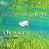 Atlantic Flies