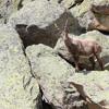 Remondino Boulder