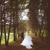 NY Wedding FIlms & Cinematograpy