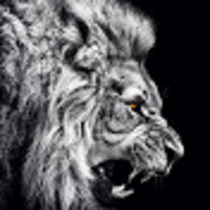 Profile picture for calimojo510