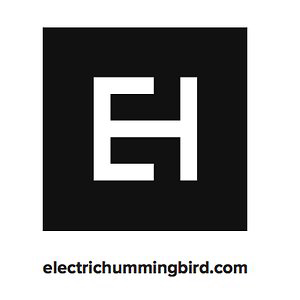 Profile picture for Electric Hummingbird