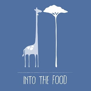 Profile picture for Into the Food