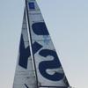 Synergy Sailing