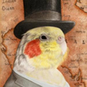 Profile picture for Jason Boyce