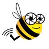 Bee Aerial
