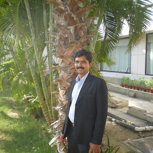 Profile picture for Noel Kamran