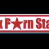 Ex Porn Star