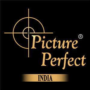 Profile picture for Picture Perfect India