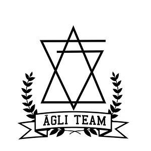 Profile picture for AGLI TEAM
