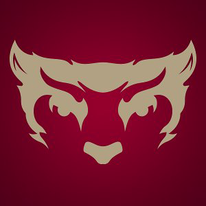 Profile picture for Willamette Bearcats