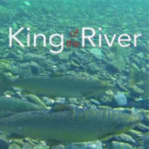 Profile picture for kingoftheriver