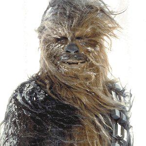 Profile picture for chewbacca