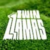 twin llamas