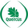 Quercus Porto