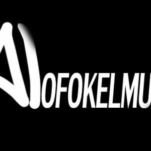 Profile picture for ALOFOKELMUSIC