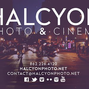 Profile picture for Halcyon Photography
