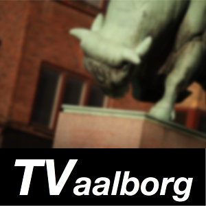 Profile picture for TV Aalborg