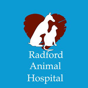 Profile picture for Radford Animal Hospital