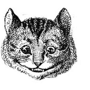 Profile picture for il gato