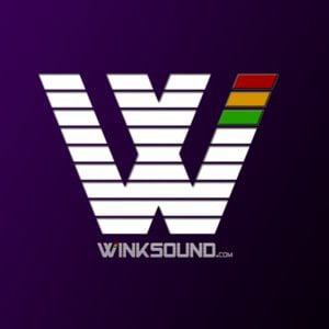 Profile picture for WinkSound Studios