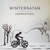 Wintergatan