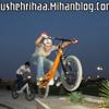 Bushehri