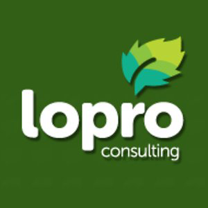 Profile picture for LoPro Consulting
