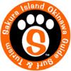 sakura island okinawa