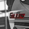 Andrew Gillis