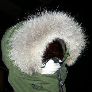 Profile picture for Clavis