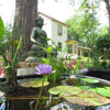 Maria Kannon Zen Center