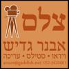 Avner Gaddish
