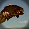 WorldCast Anglers