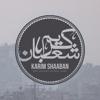 Karim Shaaban