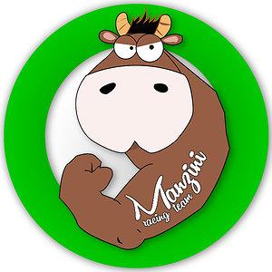 Profile picture for I Manzini ASD