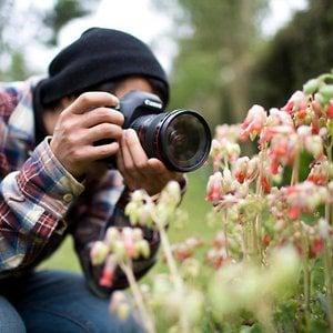 Profile picture for david.sekiguchi