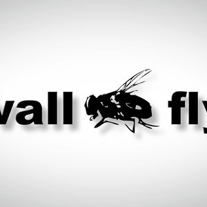 Profile picture for Wall Fly Media