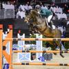 Breen Equestrian Ltd.