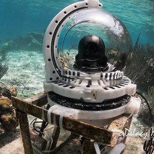 Profile picture for ReefCam
