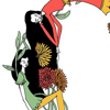 lara costafreda oromí