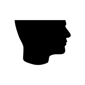 Profile picture for Lapsus