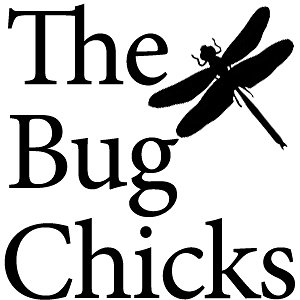 Profile picture for Bug Chicks
