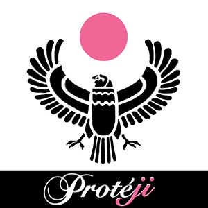 Profile picture for Proteji Pictures