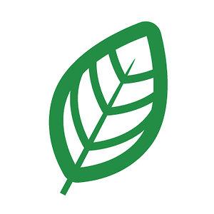Profile picture for Association Végétarienne - MTL