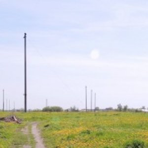 Profile picture for Dimitri Venkov