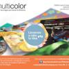 Multicolor Company