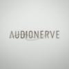 Audionerve
