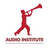 Audio Institute