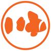 Rubber Fish Studios
