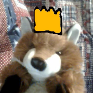 Profile picture for Fox Prince